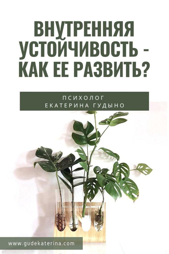 vnutrennyaya-ustoichivost